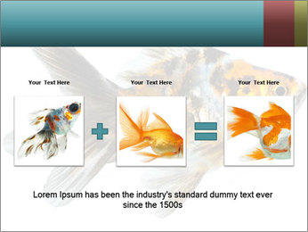 Golden Fish with Unusual Ornament PowerPoint Template - Slide 22