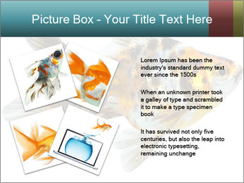 Golden Fish with Unusual Ornament PowerPoint Template - Slide 23