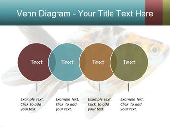 Golden Fish with Unusual Ornament PowerPoint Template - Slide 32
