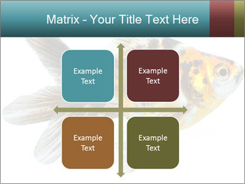 Golden Fish with Unusual Ornament PowerPoint Template - Slide 37