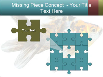 Golden Fish with Unusual Ornament PowerPoint Template - Slide 45