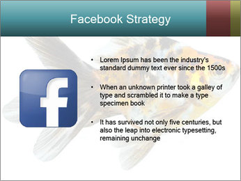 Golden Fish with Unusual Ornament PowerPoint Template - Slide 6