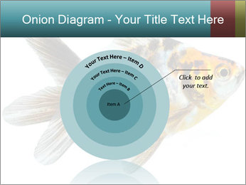 Golden Fish with Unusual Ornament PowerPoint Template - Slide 61