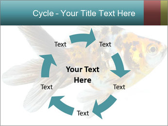 Golden Fish with Unusual Ornament PowerPoint Template - Slide 62