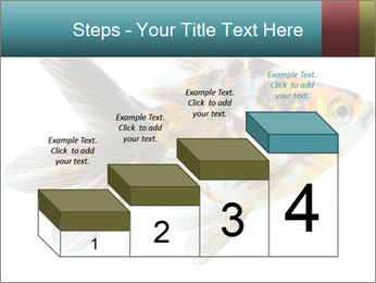 Golden Fish with Unusual Ornament PowerPoint Template - Slide 64