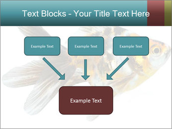 Golden Fish with Unusual Ornament PowerPoint Template - Slide 70