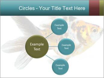 Golden Fish with Unusual Ornament PowerPoint Template - Slide 79