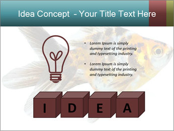 Golden Fish with Unusual Ornament PowerPoint Template - Slide 80