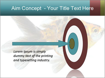 Golden Fish with Unusual Ornament PowerPoint Template - Slide 83
