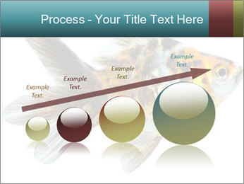 Golden Fish with Unusual Ornament PowerPoint Template - Slide 87