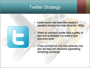 Golden Fish with Unusual Ornament PowerPoint Template - Slide 9