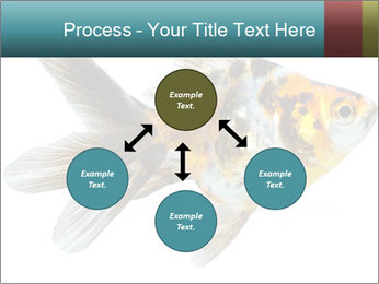 Golden Fish with Unusual Ornament PowerPoint Template - Slide 91