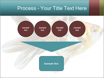 Golden Fish with Unusual Ornament PowerPoint Template - Slide 93
