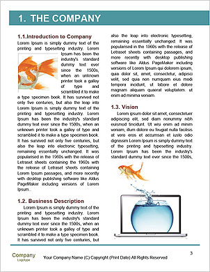 0000063387 Word Template - Page 3