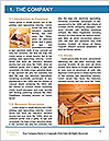 0000063388 Word Template - Page 3