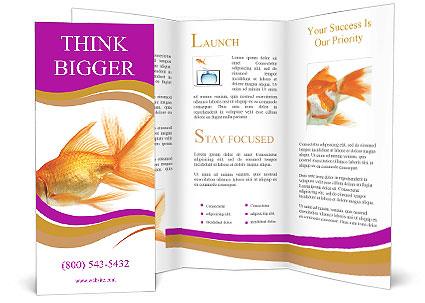 0000063399 Brochure Template