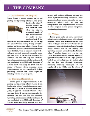 0000063401 Word Template - Page 3