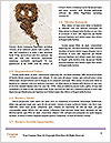 0000063401 Word Templates - Page 4