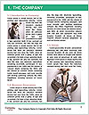 0000063405 Word Template - Page 3