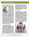 0000063407 Word Template - Page 3