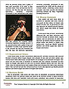 0000063416 Word Templates - Page 4