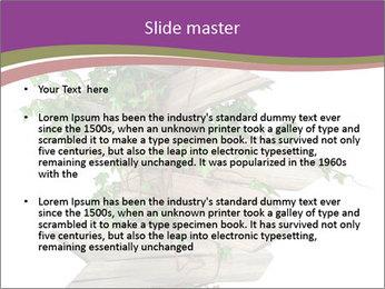 Rural Road Sign PowerPoint Template - Slide 2