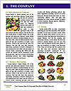 0000063438 Word Templates - Page 3