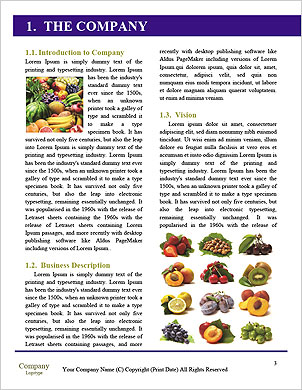 0000063438 Word Template - Page 3