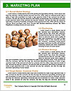 0000063446 Word Templates - Page 8