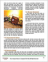 0000063448 Word Template - Page 4