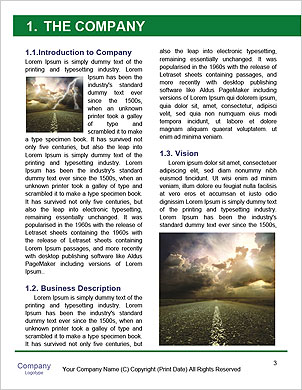 0000063449 Word Template - Page 3
