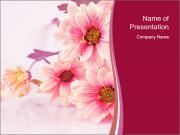 Floral Ikebana PowerPoint Templates