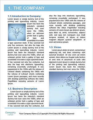 0000063467 Word Template - Page 3