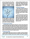 0000063467 Word Templates - Page 4