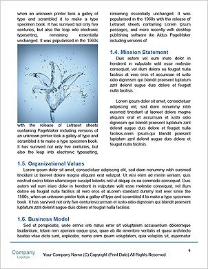 0000063467 Word Template - Page 4