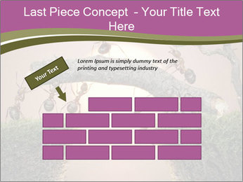 Cartoon Ants Building Bridge PowerPoint Templates - Slide 46