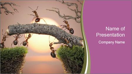 Cartoon Ants Building Bridge PowerPoint Template