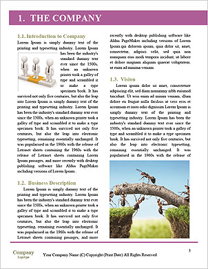 0000063470 Word Template - Page 3