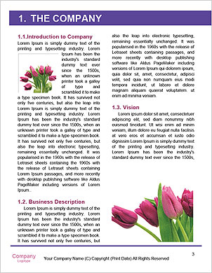 0000063477 Word Template - Page 3
