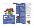 0000063478 Brochure Templates