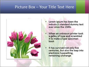 Bouquet of Purple Tulips PowerPoint Templates - Slide 13