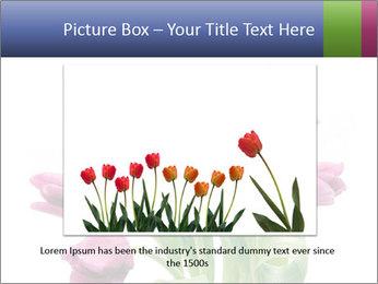 Bouquet of Purple Tulips PowerPoint Templates - Slide 15