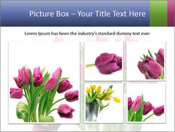 Bouquet of Purple Tulips PowerPoint Templates - Slide 19