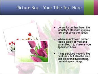 Bouquet of Purple Tulips PowerPoint Templates - Slide 20