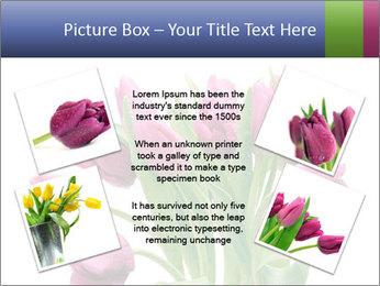 Bouquet of Purple Tulips PowerPoint Templates - Slide 24