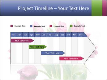Bouquet of Purple Tulips PowerPoint Templates - Slide 25