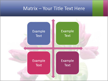 Bouquet of Purple Tulips PowerPoint Templates - Slide 37