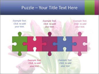 Bouquet of Purple Tulips PowerPoint Templates - Slide 41