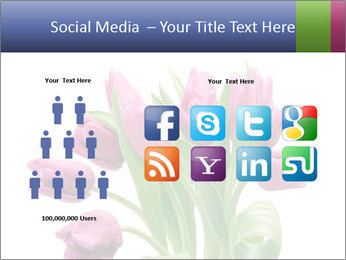 Bouquet of Purple Tulips PowerPoint Templates - Slide 5
