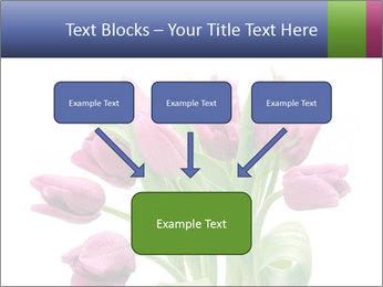 Bouquet of Purple Tulips PowerPoint Templates - Slide 70